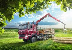 Pro práci vlese je ideální Tatra Phoenix EU 6 6x6